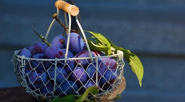 sljive-kalorije-vitamini-i-prednosti-za-zdravlje