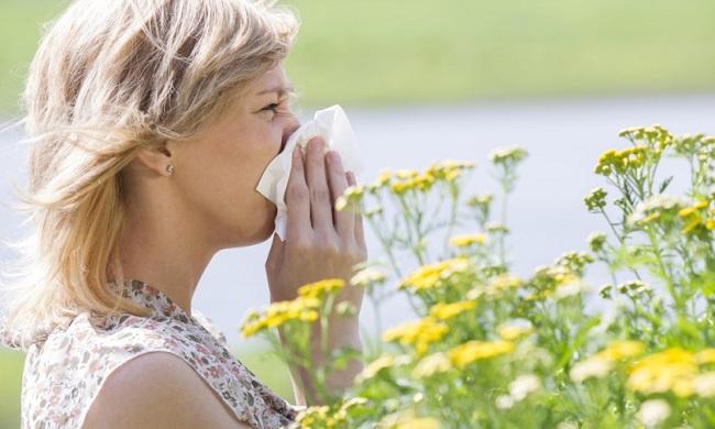alergija-na-polen-simptomi-uzrok-ishrana-i-lecenje
