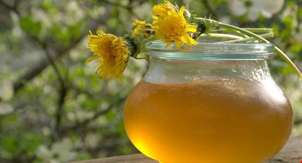 med-i-sirup-od-maslacka-upotreba-kao-lek-i-recept